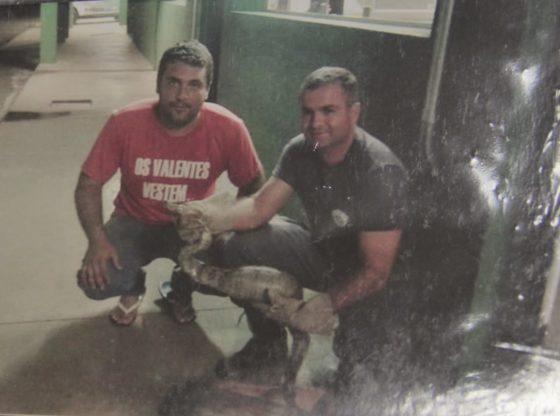Com a camiseta da ONG, Daniel Barreira, no resgate de uma cobra em parceria com a Polícia Militar Ambiental (Foto: Acervo)