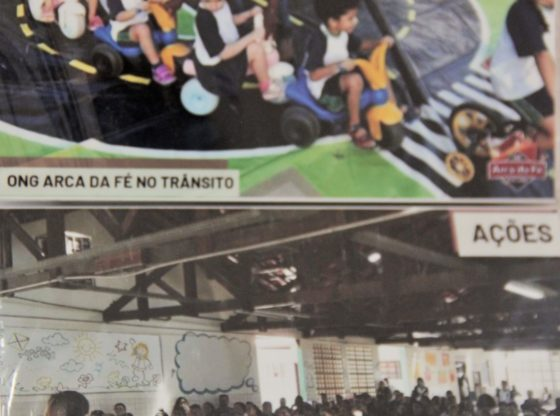 Além das ações pelos animais, a ONG realiza atividades em escolas (Foto: Acervo)